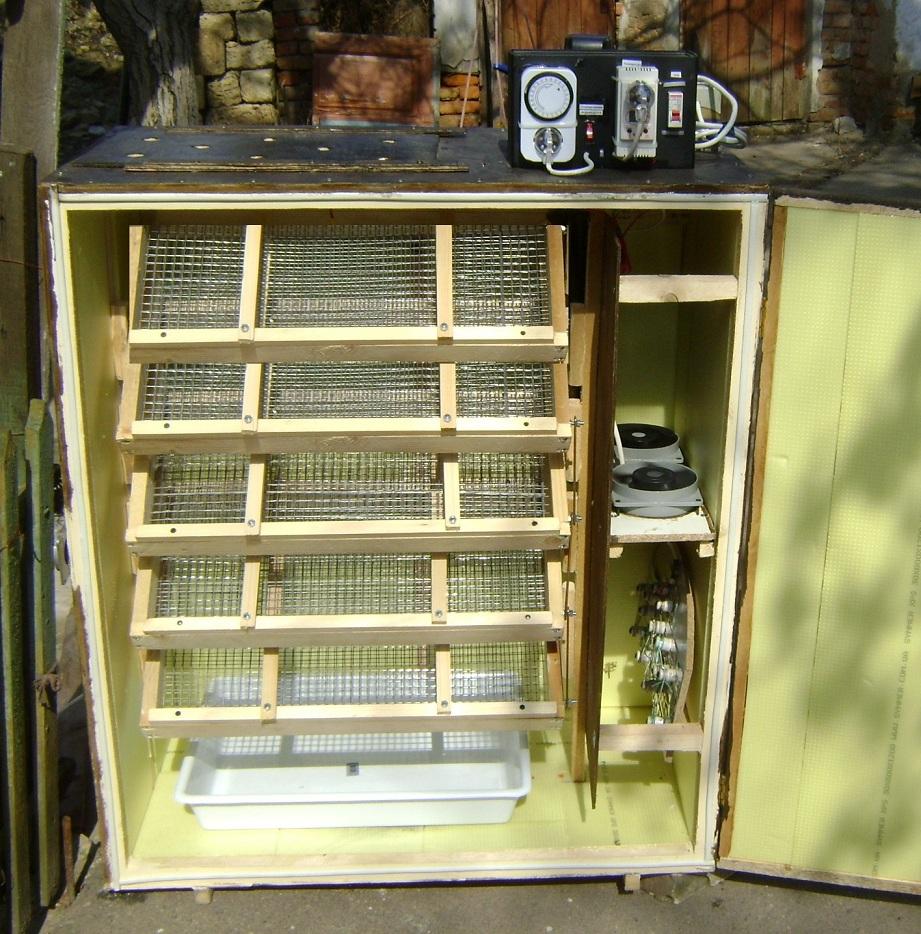 Самодельный инкубатор как сделать инкубатор в домашних